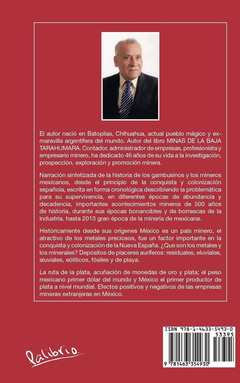 Gambusinos y Mineros Mexicanos: Amazon.es: Pompa, Isidro Hernandez ...