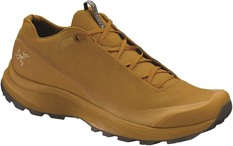 Arc teryx Aerios FL GTX Shoe Men s