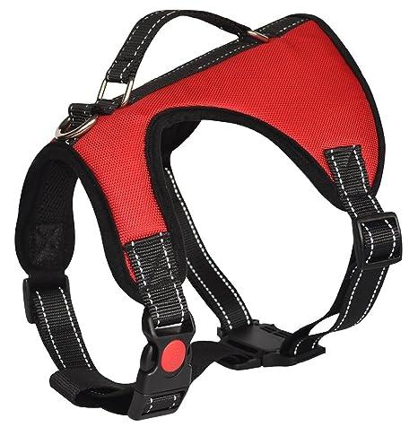 Arnés para perro Lantra Besa, 2 modos de uso, accesorios para ...
