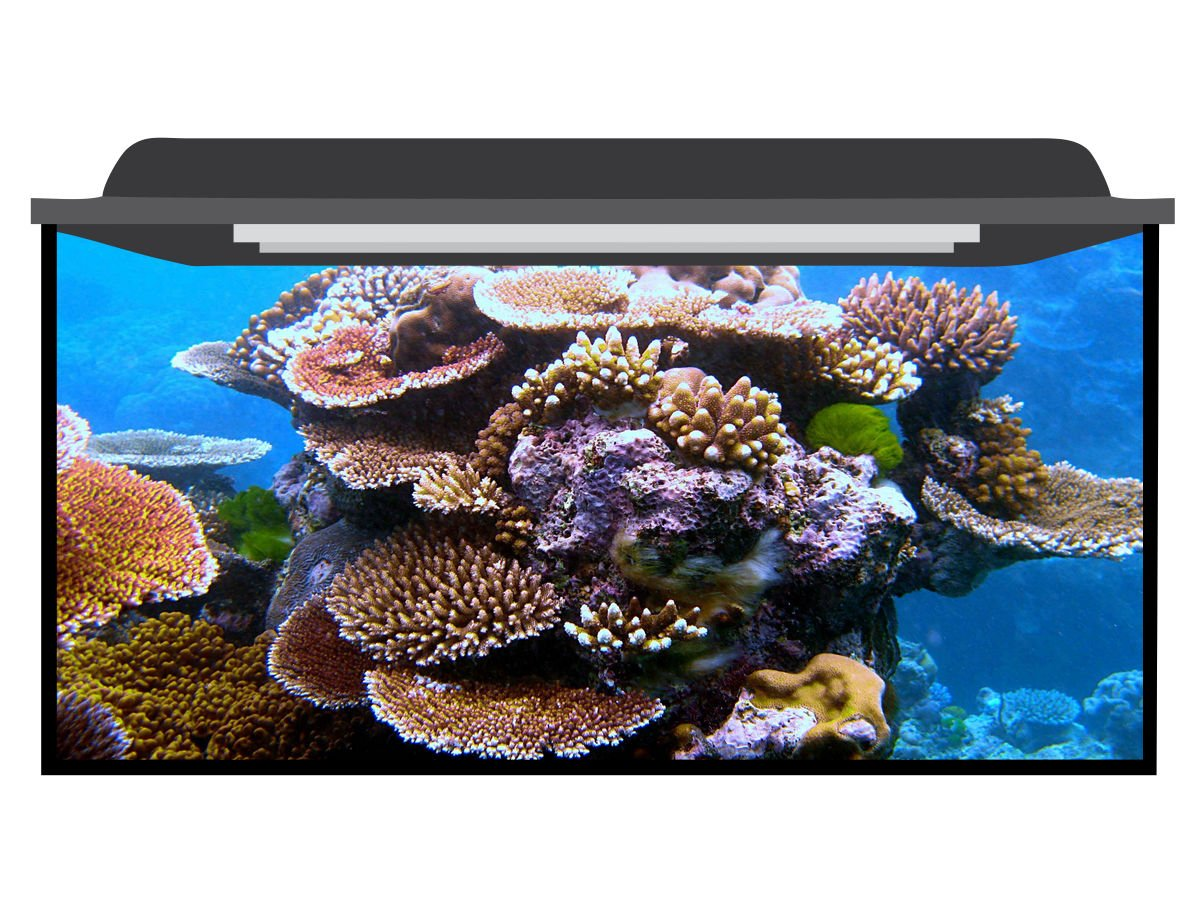 Deep Blue Themes Reef Tower Aquarium Background (20-35 Gallons (30Wx24H))