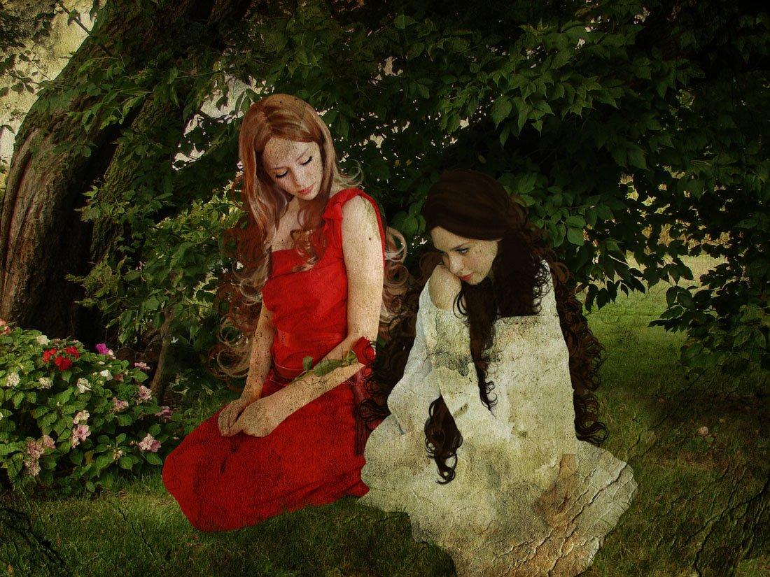 雪ホワイトとローズレッド – キャンバスまたは壁アート印刷印刷 Fine Paper - 18 x 24 Fine Paper - 18 x 24  B008GWOT24