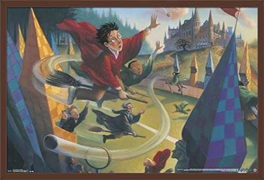 Harry Potter Print Watercolor Picture Wall Art Framed Canvas Gift Quidditch