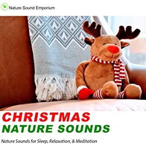 Christmas Nature Sounds - Nature Sounds for Relaxation, Meditation, Studying & Deep Sleep