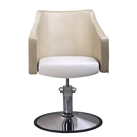 Awesome Amazon Com Beauty Style Fashion Styling Salon Chair Barber Dailytribune Chair Design For Home Dailytribuneorg