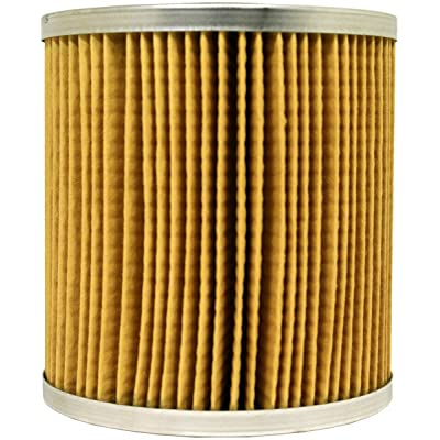 Luber-finer LFF2040 Heavy Duty Fuel Filter: Automotive