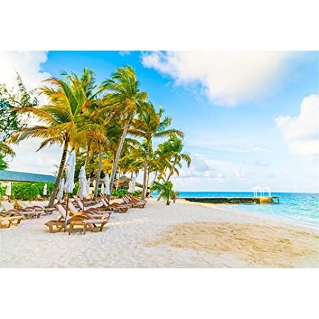 Seaside Fondale Studio Fotografico Spiaggia Blu Cielo E Mare Verde
