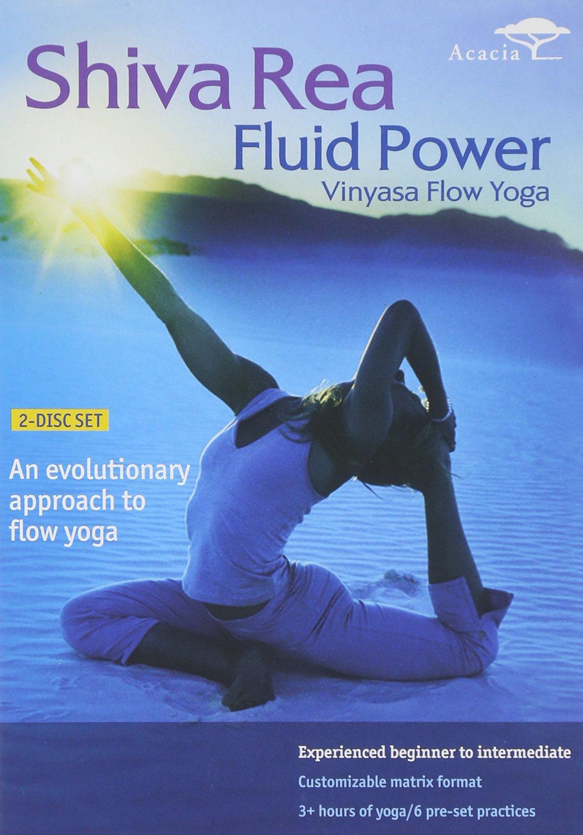 DVD : Fluid Power: Vinyassa Flow Yoga (Widescreen, 2PC)