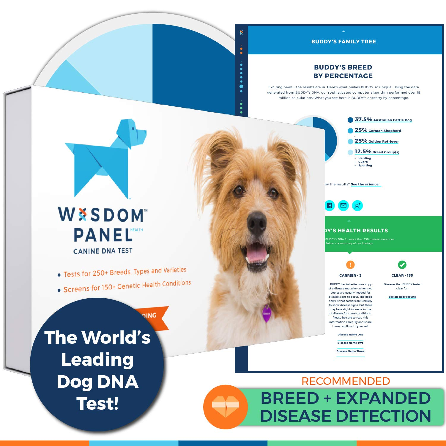Wisdom Panel Health Canine DNA Test - Dog DNA Test Kit for Breed, Ancestry and Genetic Health Information by Wisdom Health