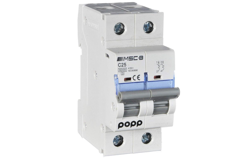 1P+N, 32A POPP/® Interruptor Autom/ático Magnetot/érmico industrial CURVA C 1P 2P 3P 6A 10A 16A 20A 25A 32A 40A 50A 63A /…