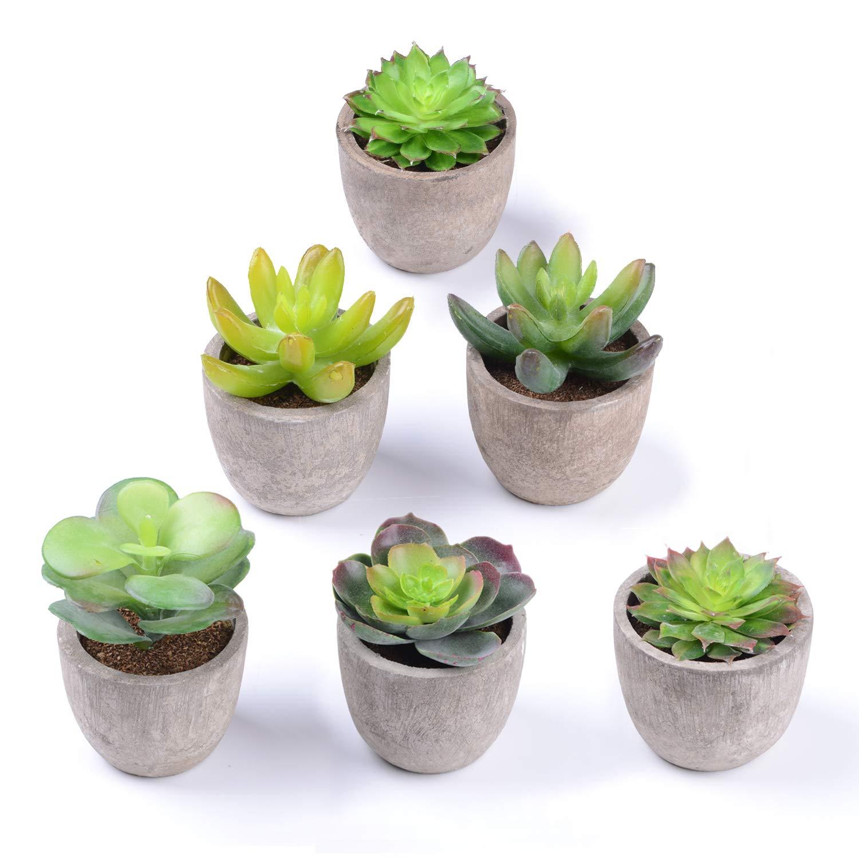 Attvn Piante succulente artificiali - Set di 6 falso succulente fioriera cactus finto piante
