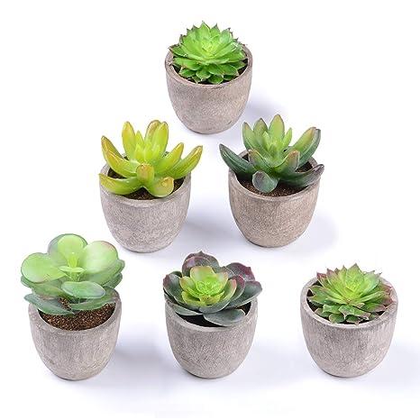 Yqing Plantas Suculentas Artificiales Plastico Maceta Decorativas Plantas Artificiales Verdes Para Casa Cocina Jardín Hogar Oficina Decoración 6