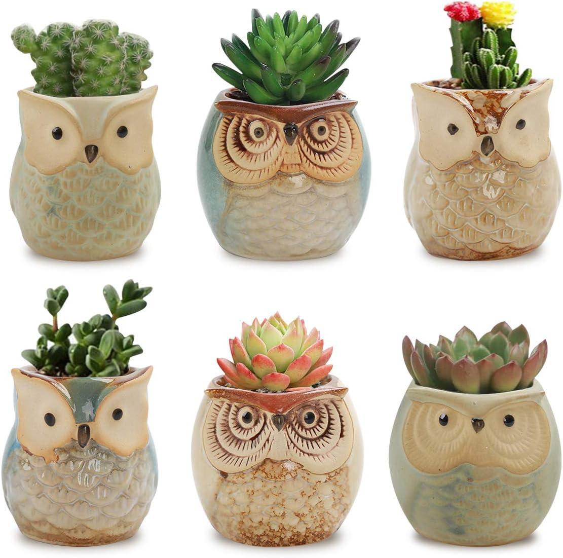 decoration Owl Ceramic Plate animal mint green suace ceramic bowl small ceramic elephant owl plate owl bowl dish ceramic dish