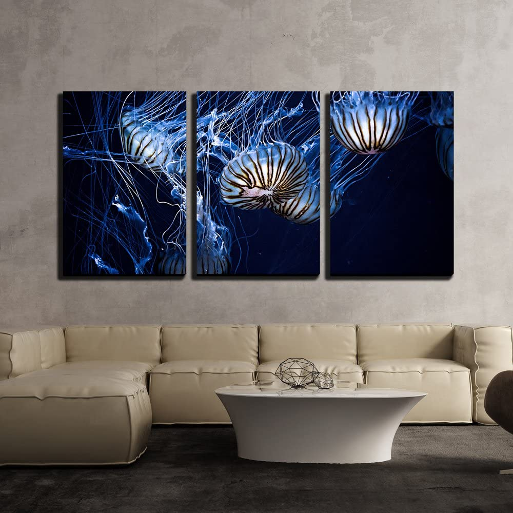 "wall26 - 3 Piece Canvas Wall Art - Glowing Jellyfish Under Deep Ocean - Modern Home Art Stretched and Framed Ready to Hang - 16""x24""x3 Panels"