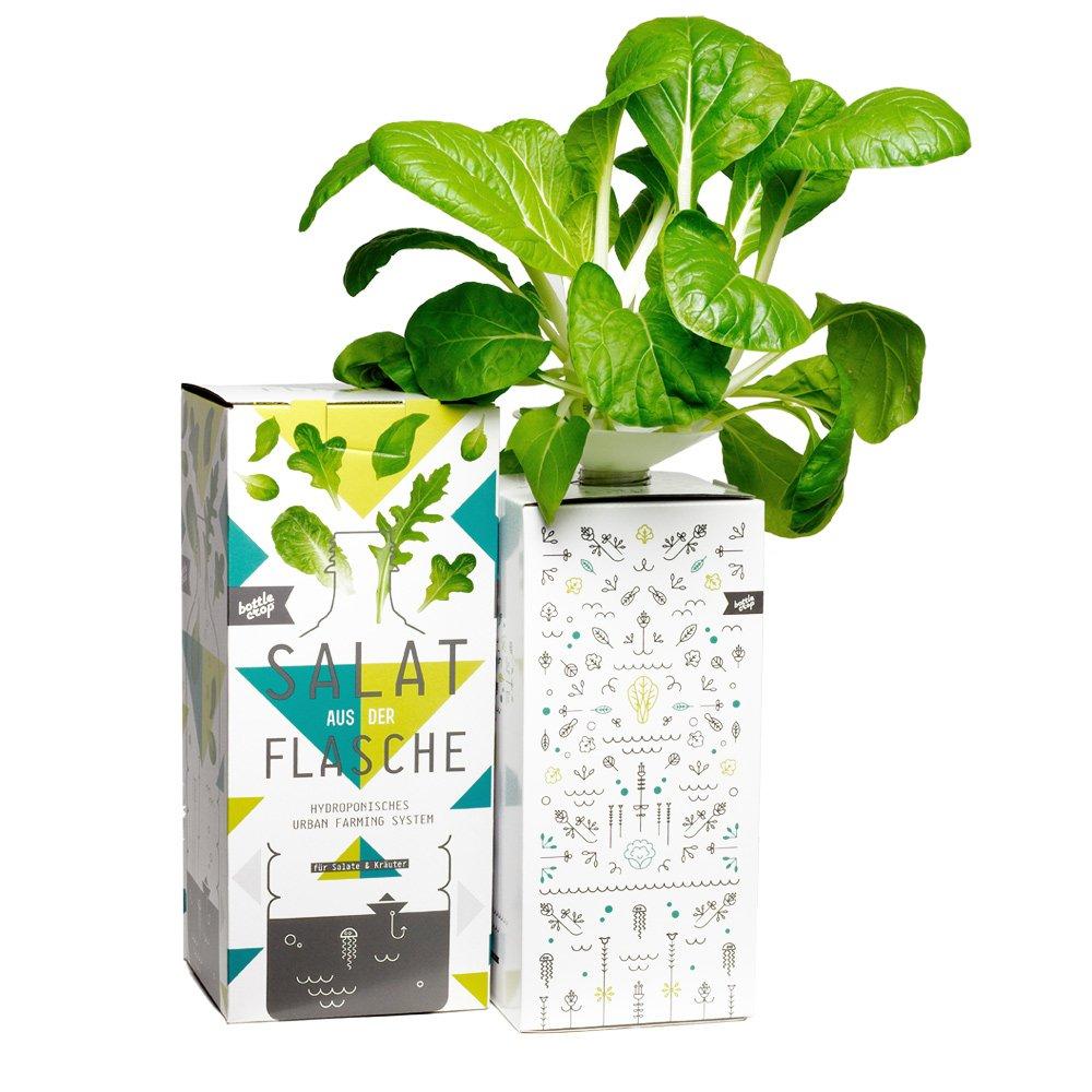 Bottlecrop - Salat aus der Flasche | Japanischer Senfspinat | in Flasche | Einzugsgeschenk | Anzuchtsystem | Urban Farming | Geschenkidee | Hydrokultur | Pflanzen ohne Erde| Krä uter Fentsterbank | Krä utergarten Fenster| vertikaler Garten | nach
