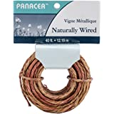 40 Feet of Vine Wrapped Rustic Feel Craft Wire