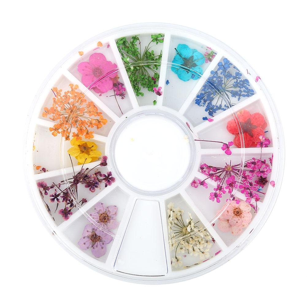 12 Types Dried Flower Nail Art Design Colorful Natural Dried Flowers Set Real Dry Flowers Nail Decoration Manicure Arts GLOGLOW