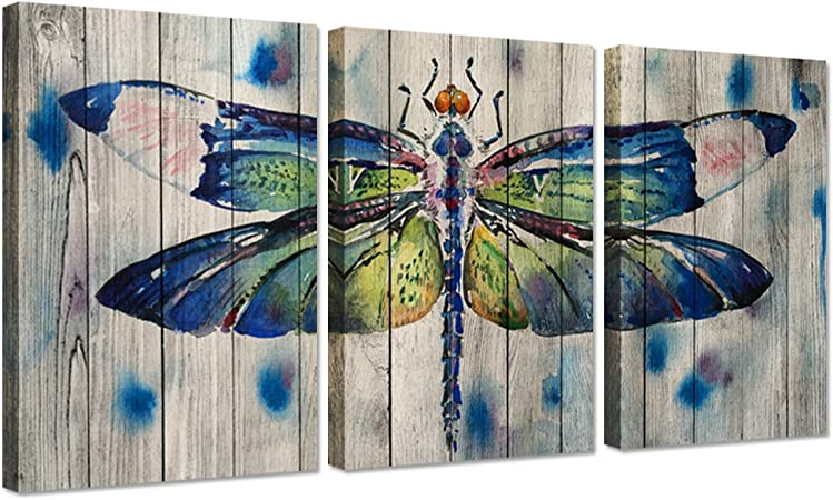 Amazon Com Ihappywall 3 Pieces Canvas Wall Art Watercolor Dragonfly On Wood Background Vintage Animals Painting Print On Canvas Stretched And Framed For Home Decoration Ready To Hang 16x24inchx3pcs Posters Prints