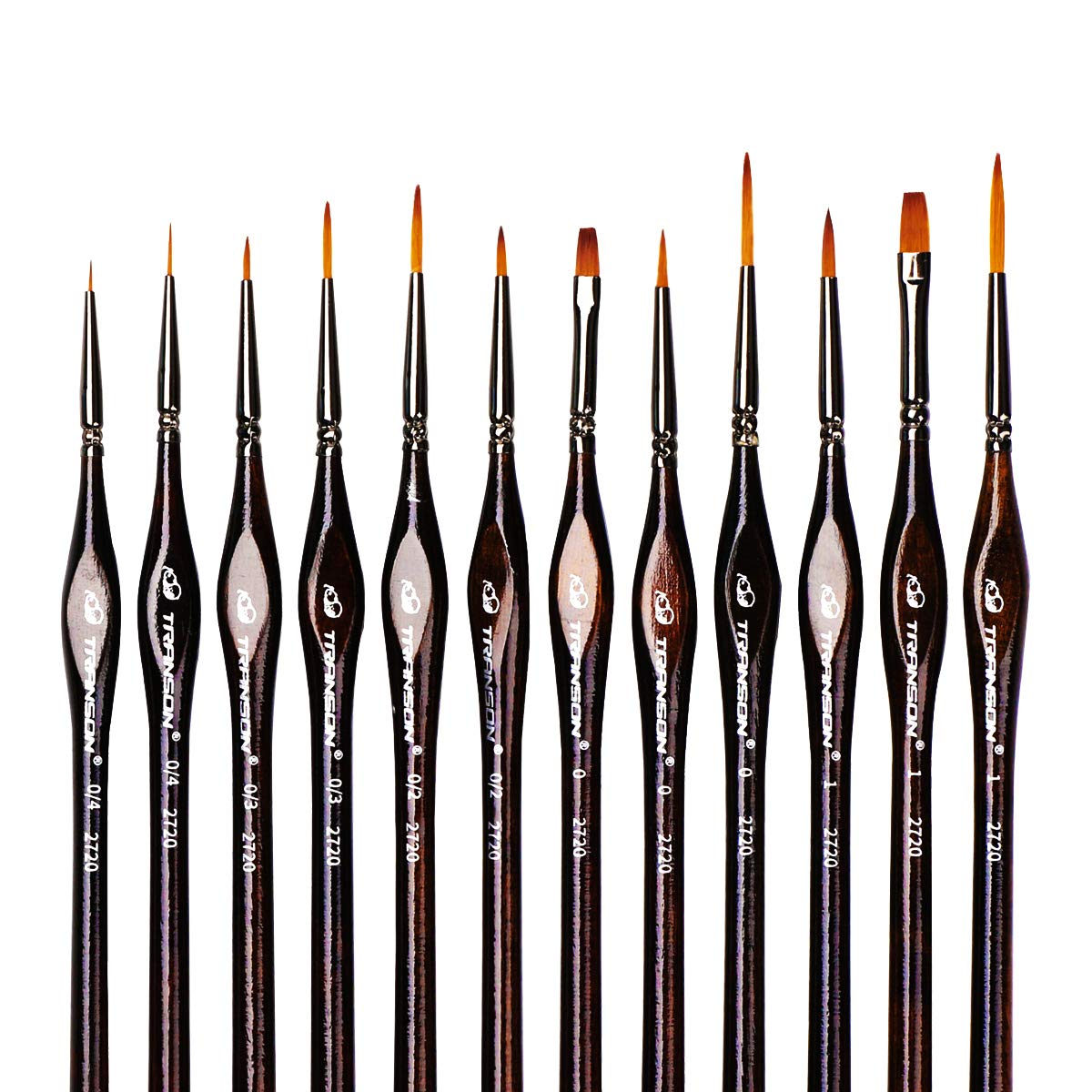 Transon Artist Detail Paint Brushes with Case 12pces for Miniatures, Models, Acrylics, Oil, Tempera, Enamel, and Body Painting by Transon