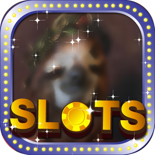 Caesar Free Slots Wolf Run   Awesome Las Vegas City Casino Game Free