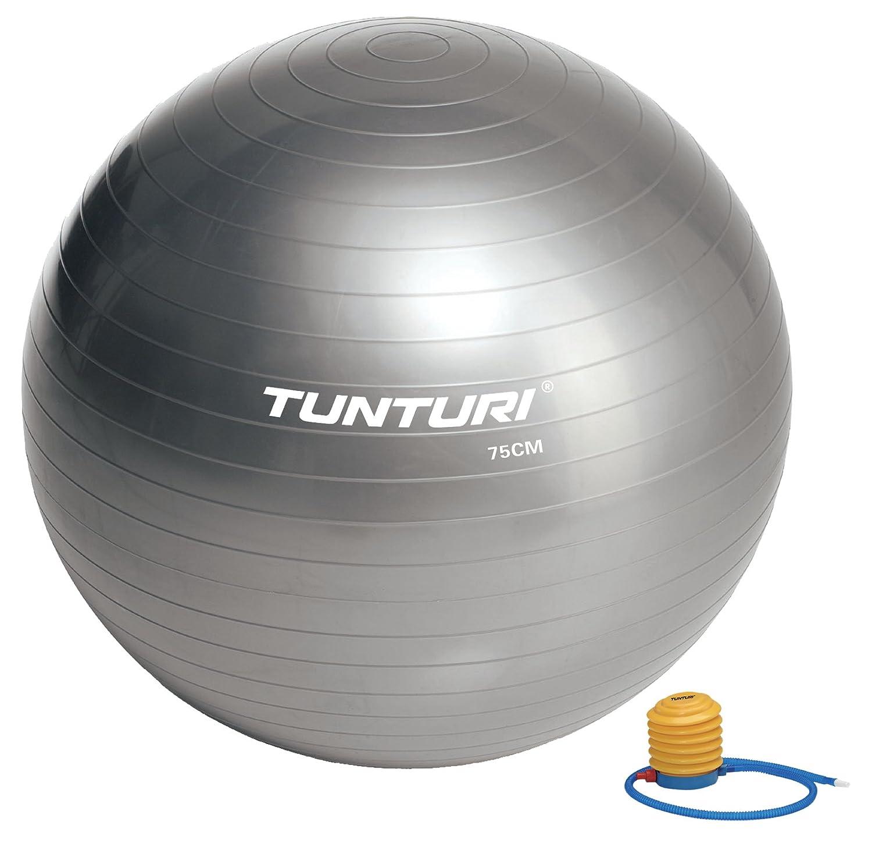 Tunturi-Fitness 14Tusfu279 Balón Suizo, Unisex Adulto, Plata, 75 ...