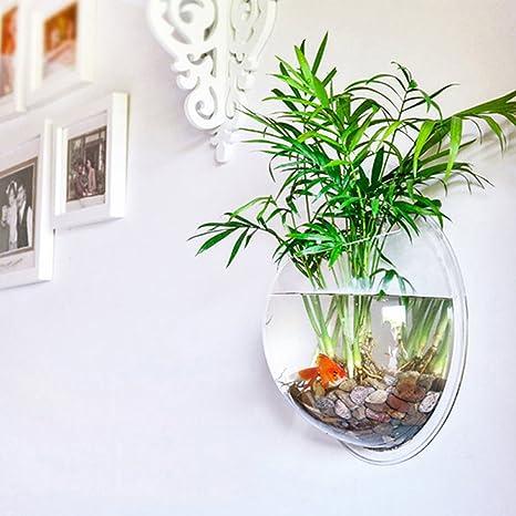 Pinjeer Decoración del hogar Plantas Transparentes Maceta Floreros Colgantes de Montaje de Pared Bubble Aquarium Bowl Fish Tank Acuario: Amazon.es: Hogar