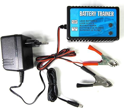 Batterietrainer Ladegerät Erhaltungsgerät 12v 10 250ah Kfz Batterie Wächter Bike Auto