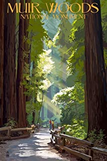 product image for Muir Woods National Monument, California - Pathway (24x36 Giclee Gallery Print, Wall Decor Travel Poster)