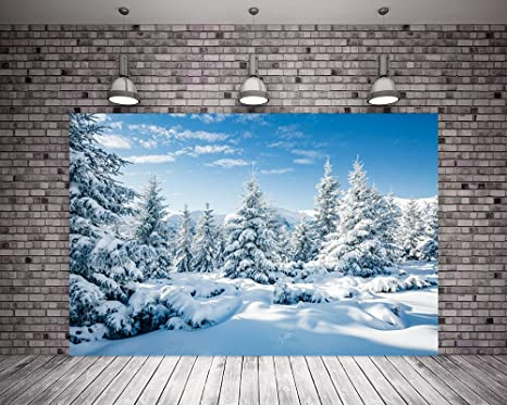 Winter nature backgrounds Cool Image Unavailable 123rfcom Amazoncom Kate 7x5ft 220cmx150cm White Snow Winter Backgrounds