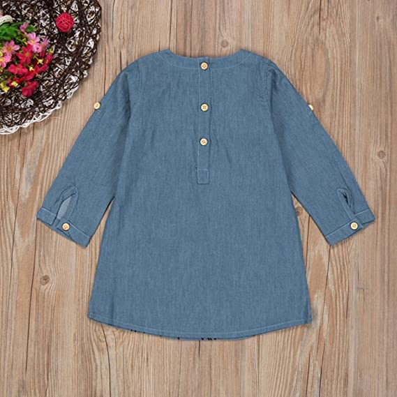 Lurryly 2018 Baby Girls Toddler Kids Clothes Flower Embroidery Denim Princess Dresses