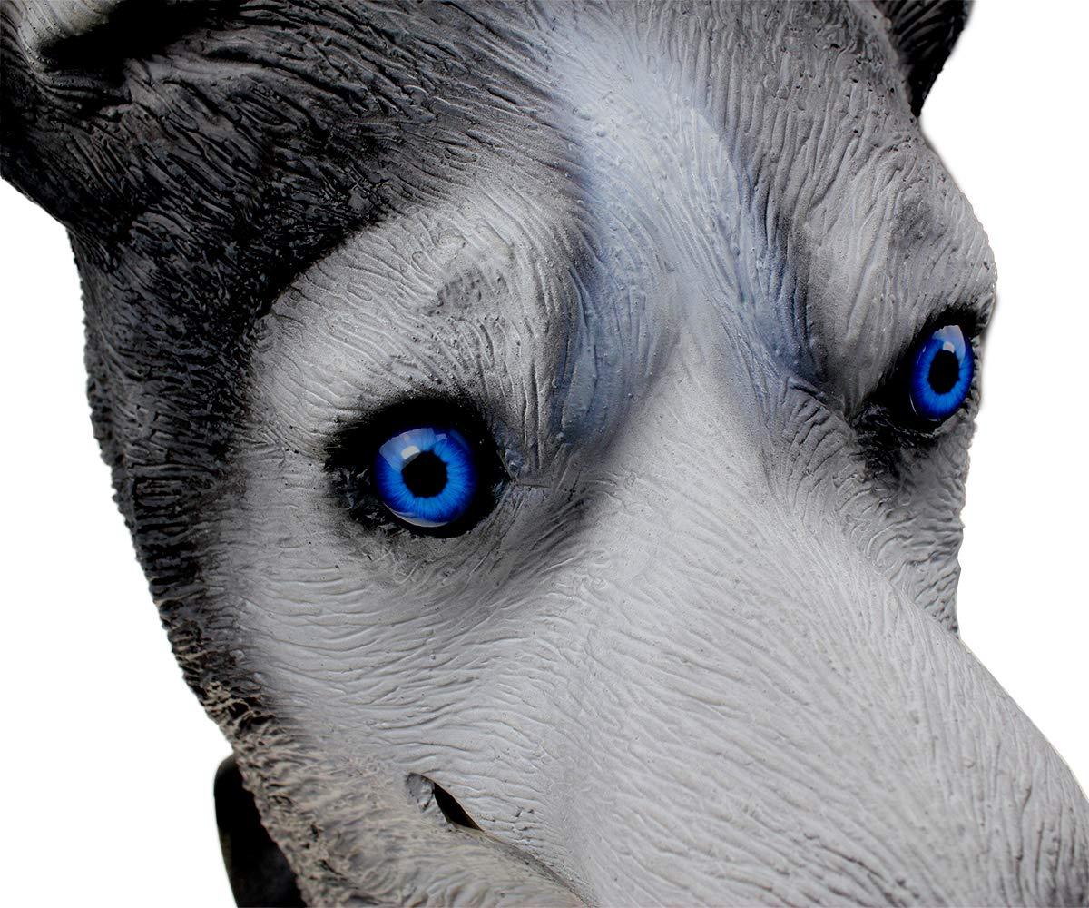 Halloween Hen Stag Props Theatre Model MASCARELLLO Latex Wolf Siberiano Husky Head Mask