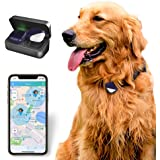 PetFon Pet GPS Tracker, No Monthly Fee, Real-Time Tracking Collar Device, APP Control For Dogs And Pets Activity Monitor