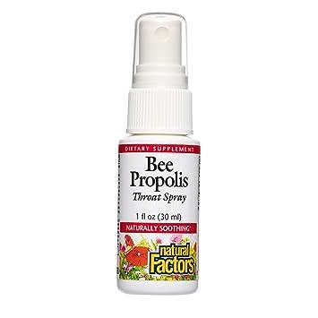 Natural Factors - Bee Propolis Throat Spray, Naturally Soothing, 100  Servings (1 oz)