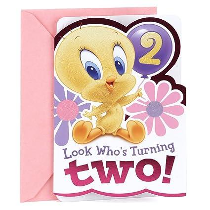 Amazon hallmark 2nd birthday greeting card for girls baby hallmark 2nd birthday greeting card for girls baby looney tunes tweety m4hsunfo