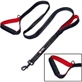 tobeDRI Heavy Duty Dog Leash - 2 Padded Handles, 6 feet long - Dog Training Walking Leashes for Medium Large Dogs