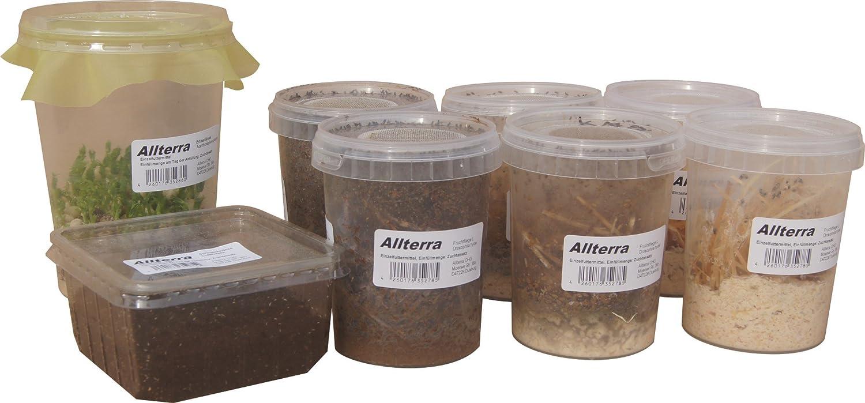 Dendrobaten - Pfeilgiftfrosch Futtermix Allterra