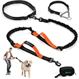PuppyDoggy Hands Free Dog Leash Reflective 6 ft for Large and Medium Dogs with Adjustable Waist Belt & Chain Martingale Dog C