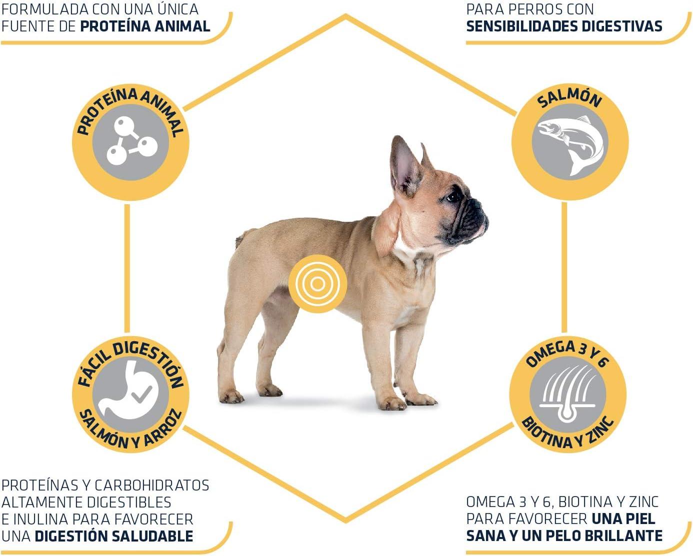 ADVANCE Sensitive Mini - Pienso Para Perros Adultos Con Sensibilidades Digestivas De Razas Pequeñas Con Salmón - 7,5 kg