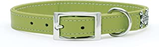 product image for Rockin Doggie Plain Leather Dog Collar, 1 by 20-Inch, Green