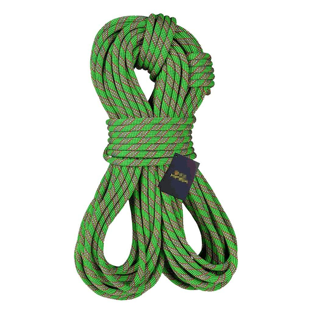 JIANPING Corde d'escalade Corde électrique Sauvetage Sauvetage Corde Travail aérien Corde Rappel Corde diamètre 10.5mm Vert Cordes (Taille   20m) 30m