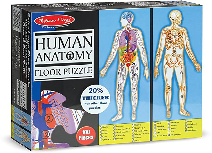 Buy Human Anatomy 100 Piece Floor Puzzle Free Melissa Doug