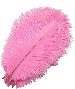 Happy Feather 8-10 inch Ostrich Feather Crafts for Wedding Party Centerpieces Home Decoration Pack of 10-Pink