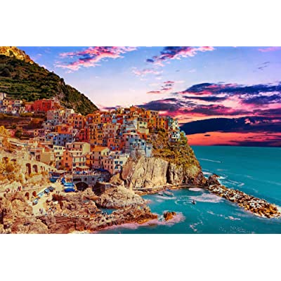 DDTOP Puzzles for Adults Teens, Difficult Italy Cinque Terre Seascape Manarola Fishing Village Landscape 1000 Piece Puzzles, Challenge Yourself with Special Funny Jigsaw Puzzle Games: Toys & Games