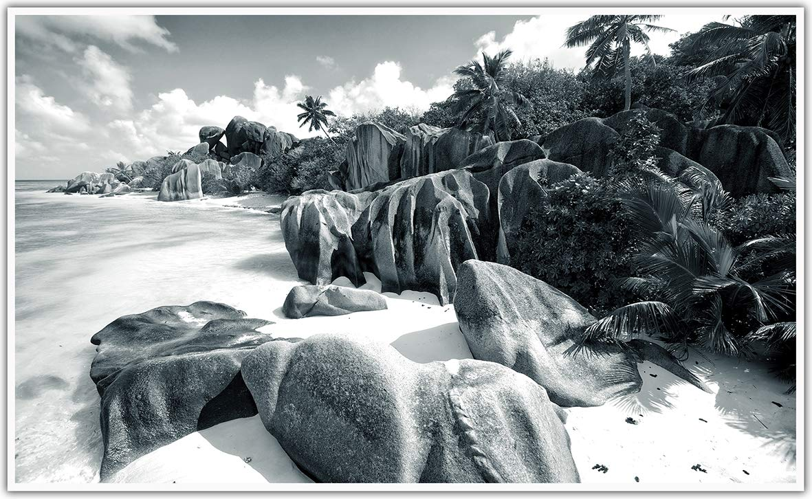 Tiger White Black Edition/_WR K/önighaus Fern Infrarotheizung 200+ Bilder Bildheizung in HD mit T/ÜV//GS Mit Thermostat 7 Tages-Programm 800 Watt -072