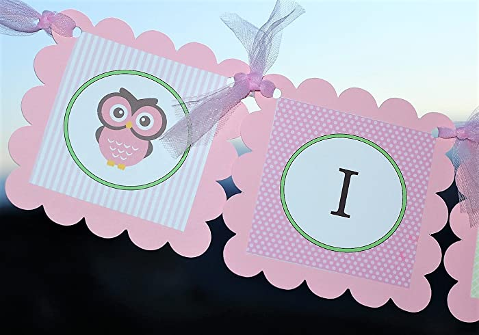 Amazon Light Pink Its A Girl Owl Baby Shower Banner
