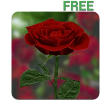Amazoncom 3d Rose Live Wallpaper Free Appstore For Android