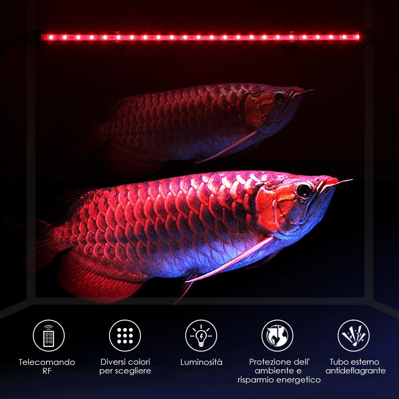 sfondo esterno per acquario fai da te: filtro esterno per acquario ... - Sfondo Esterno Per Acquario Fai Da Te