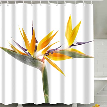 BROSHAN Flower Print Shower CurtainYellow And White Floral Spring Bloom Nature Scenic Art