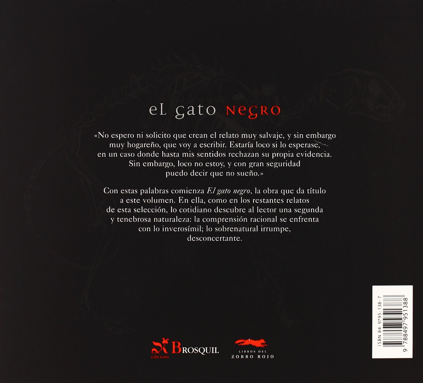 El Gato Negro / The Black Cat: Y otros relatos de terror (Del Zorro Rojo) (Spanish Edition): Edgar Allan Poe, Luis Scafati: 9788497951388: Amazon.com: Books