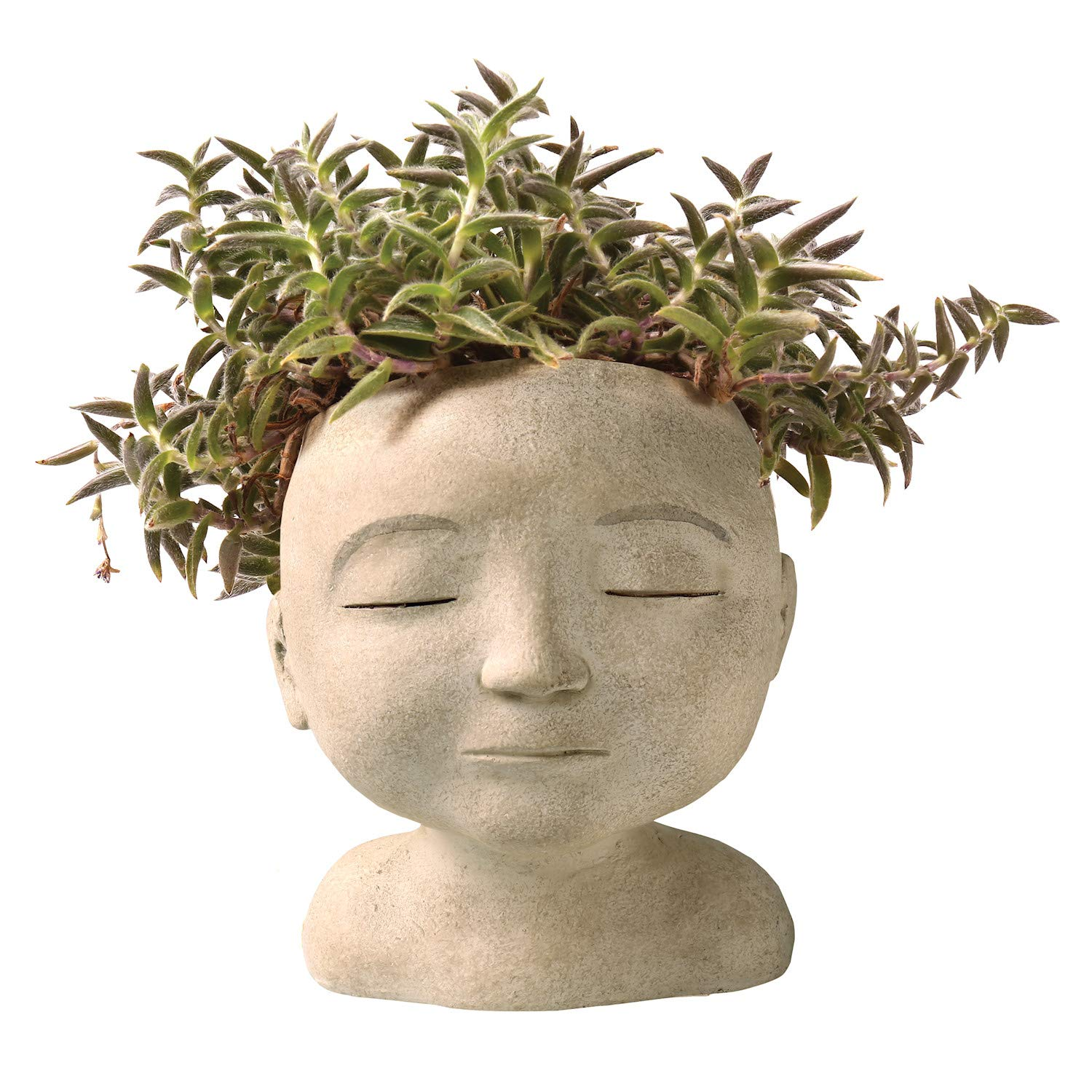 "ART & ARTIFACT Head of a Man Indoor/Outdoor Resin Planter - Plants Look Like Hair, 9"" Tall"