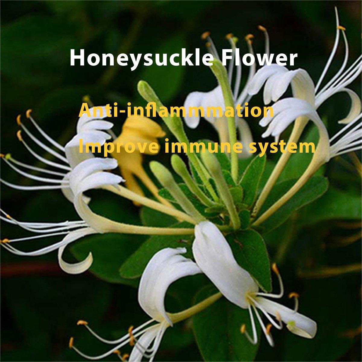 Watch 11 Amazing Health Benefits Of Honeysuckle video